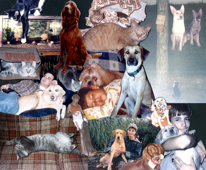 Mostly the same pets as above with these notable additions: <ul><li>Blitzi and Heidi (German shepherds from my earliest years)</li><li>Ginger (the most mischievous Irish Setter of all time)</li><li>Snoop (Doggy Dog) - Krieger's and my college yard-dog</li> <li>Nikki (my grandmother's Pekinese)</li><li>Miscellaneous guppies and angelfish</li>