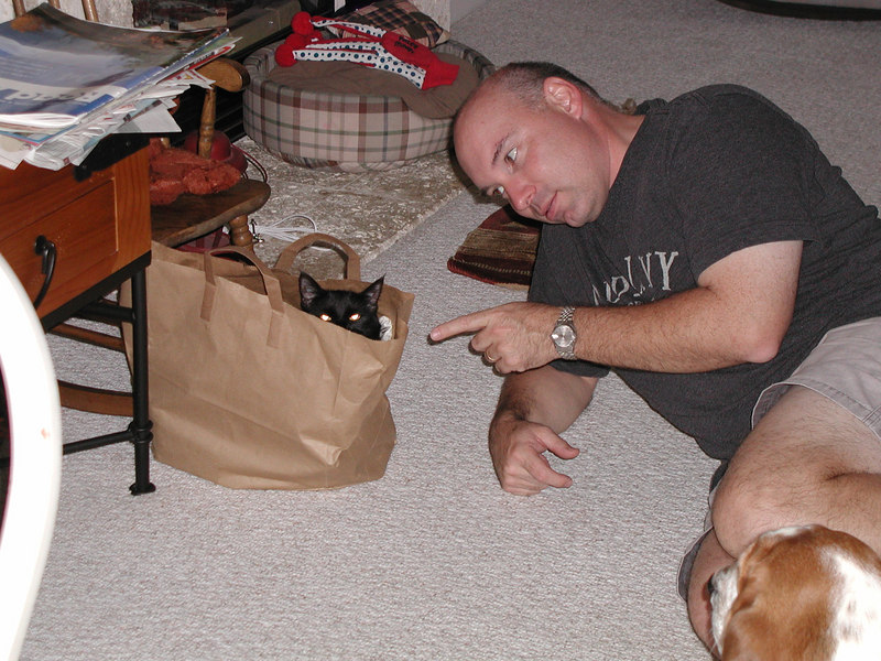 playing in a bag