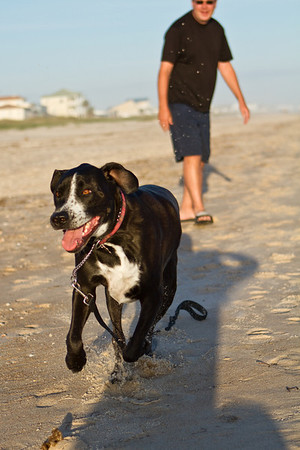 Pet Photography Florida