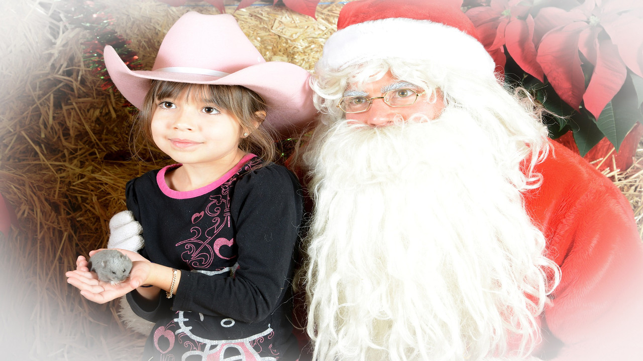 """Annual pet pictures with Santa..  I've been doing this for 19 yrs for a good friend who owns a large independent farm store nearby.<br /> <br /> """"Pets"""" in the case of country pets, means anything from dogs, cats, rabbits, birds, chickens, hamsters, gerbils, pigs, ponies, donkeys, mice....and yes, if you watch closely you will even see a skunk.  Put to music, have your speakers on."""