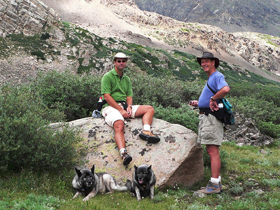 Nelson III, Nelson II, Riley & Astra on Chihuahua Gulch hike, July 2006