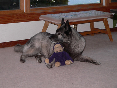 Riley and Monkey toy August 2006
