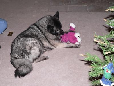 Astra & Frog toy, December 2005