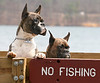 Frank (l) and Ivy (r), wishing they could go fishing in the lake at Sweetwater Park near Douglasville, GA on March 11, 2007.
