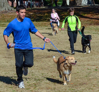 Dog Obedience & Fitness Boot Camp
