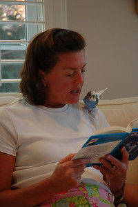 Reading with Amy (2)