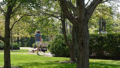 Walking at Hillsdale (1)