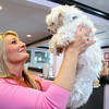 Wendy Kovach the owner of the Pink Poodle Kennel / Luxury Boarding in Leominster talks about how the adoptions are going as she holds Pierre, a rescued Fitchburg Maltese, in her arms on Tuesday morning at the kennel. SENTINEL & ENTERPRISE/JOHN LOVE