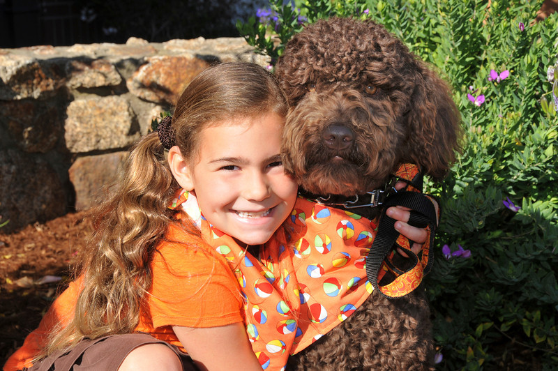#403<br /> Owner: Rosenblum family<br /> Dog: Rosie<br /> Category: Large Mix<br /> Criteria: Most Outstanding Au natural