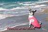 Princess at the beach 2