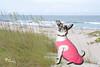 Princess on beach 1