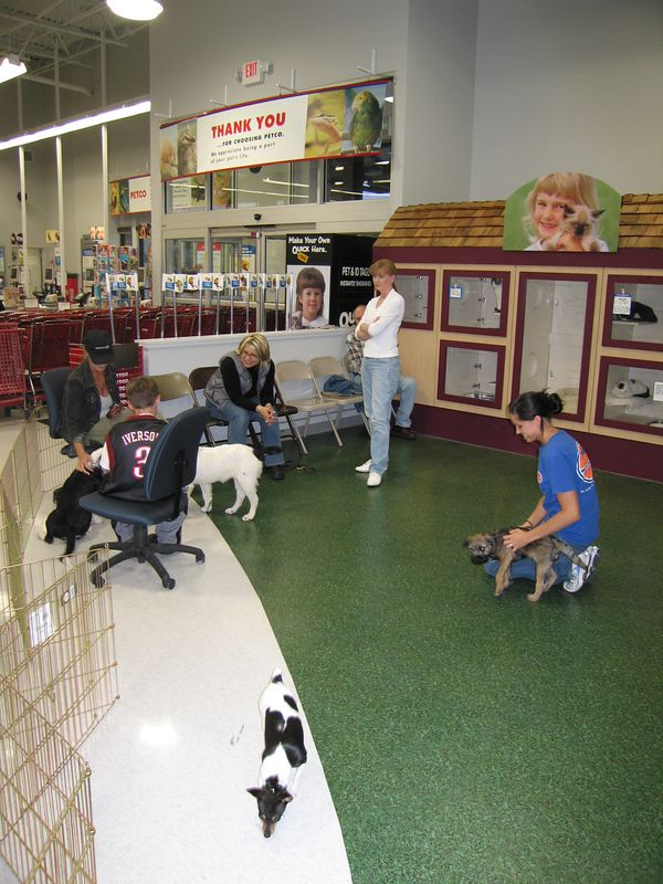 May 10, 2005 - Puppy school #3