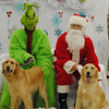 Macy and Lucy get their pictures taken with The Grinch and Santa. <br /> <br /> Photographer's Name: Tammy Everitt<br /> Photographer's City and State: Anderson , IN