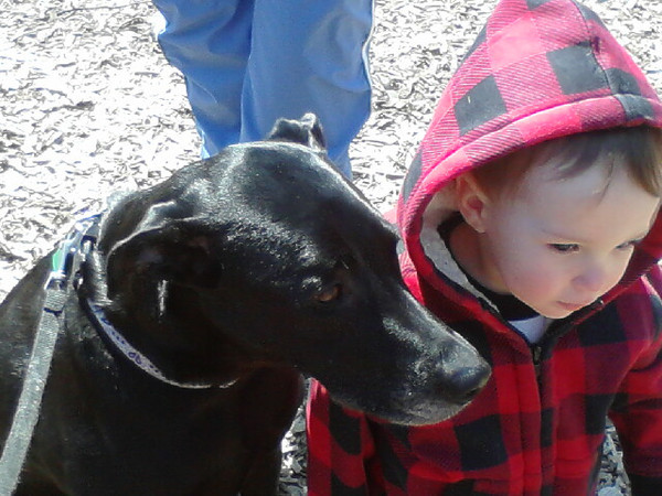 My granddog Jazzy and great-grandson enjoying the beautiful day at Shadyside Park before the snow hits.<br /> <br /> Photographer's Name: Rose Evans<br /> Photographer's City and State: Anderson, Ind.