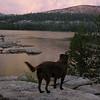 Watching the sun set at Silver Lake