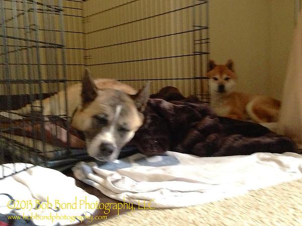 Megumi and Michi resting