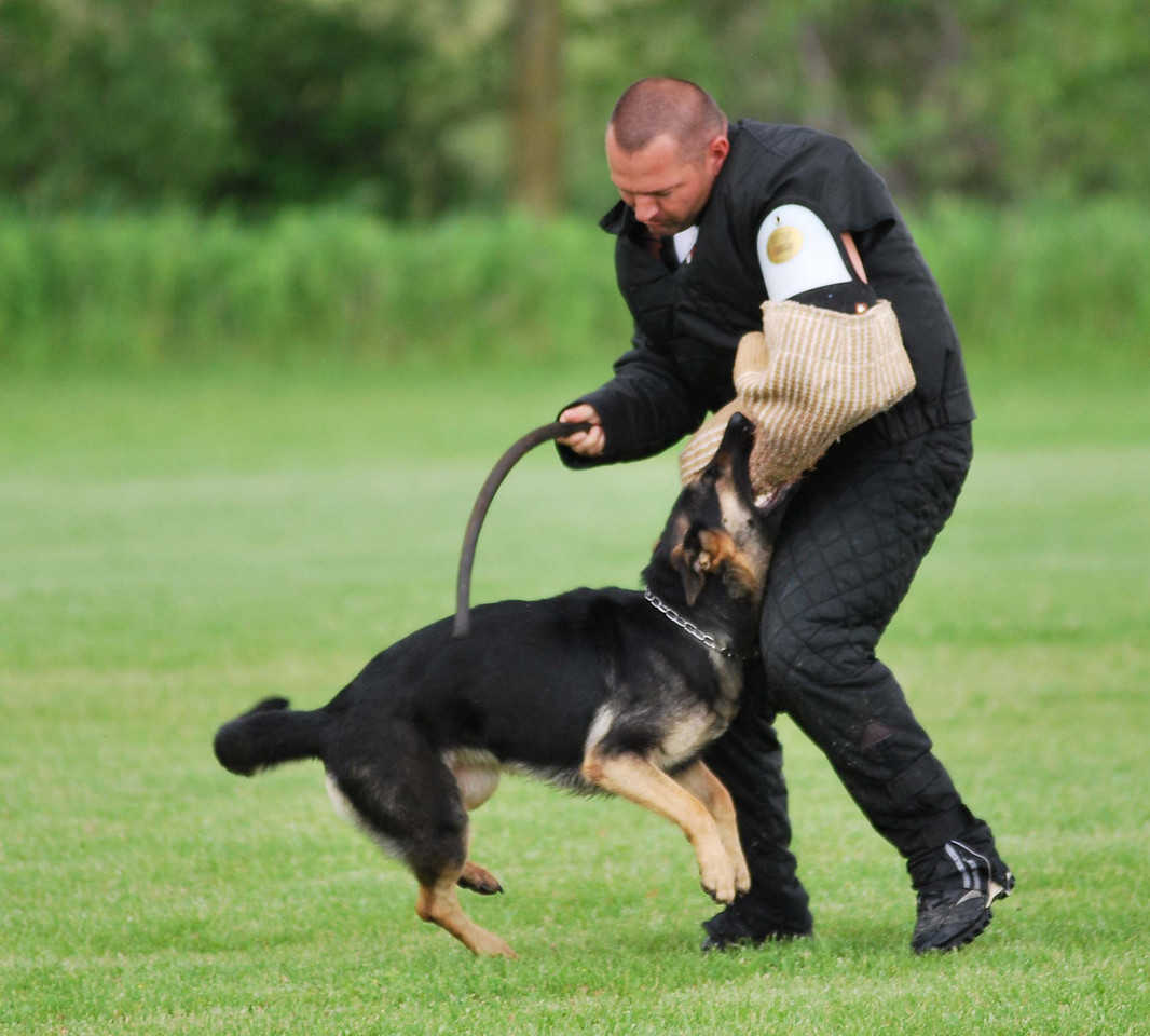 Ika, drive<br /> Fox Valley Police & SchH Club