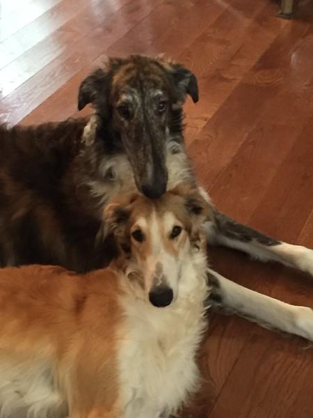Jeter and Suni