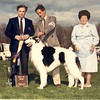Ch. Ridgeside Clarion Call (Casey)<br /> Ch. Majenkir Wotan of Foxcroft x Ch. Ridgeside Classy Chassis