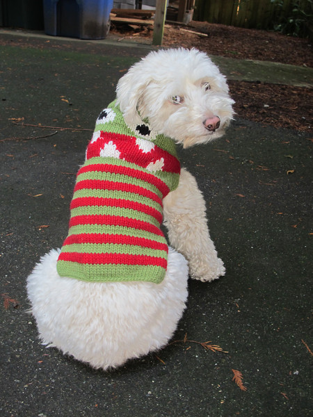 Demure in her new Hanukkah sweater.