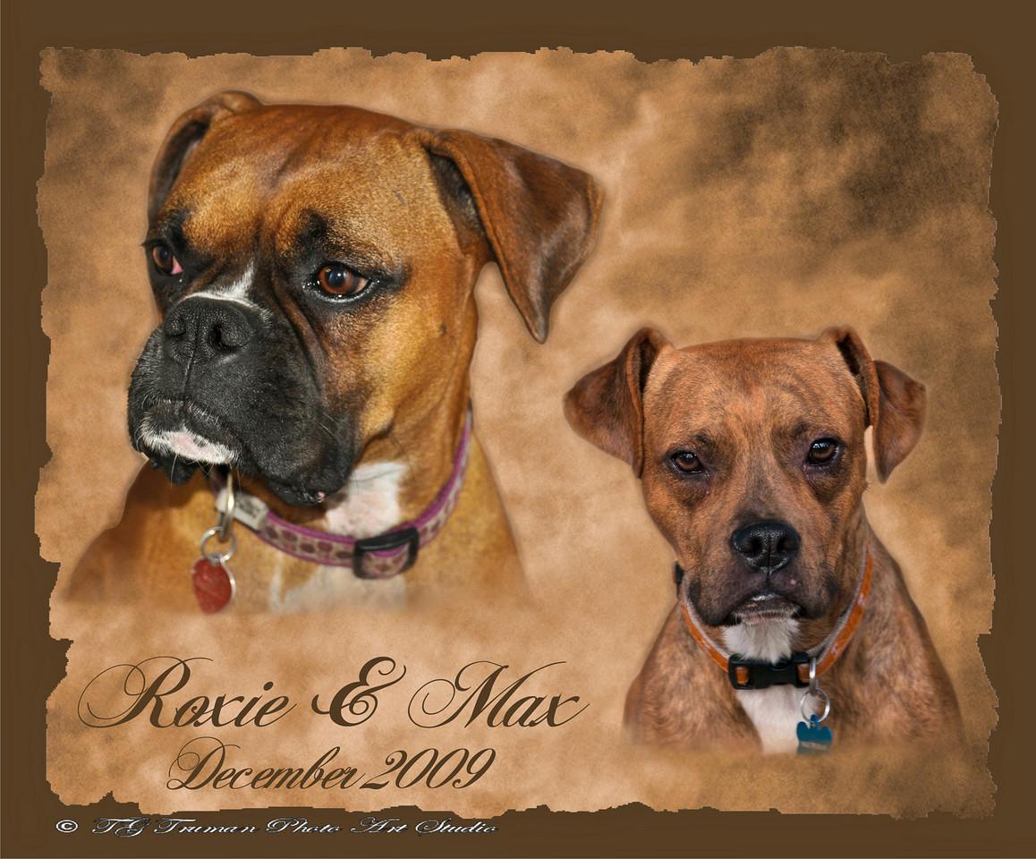 Roxie-Max_2009-1