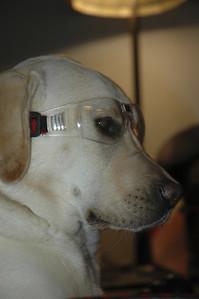 Always wear your protective eyeware!