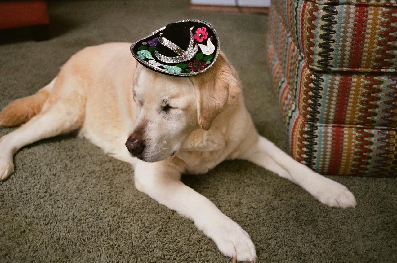 Ruby in Sombrero