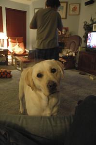 Ruby wondering