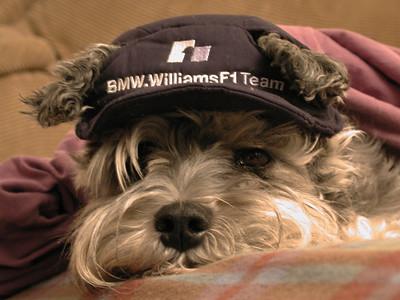 Saabina is an F1 fan!