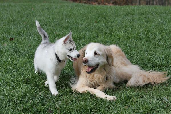 Sadie and Jackson