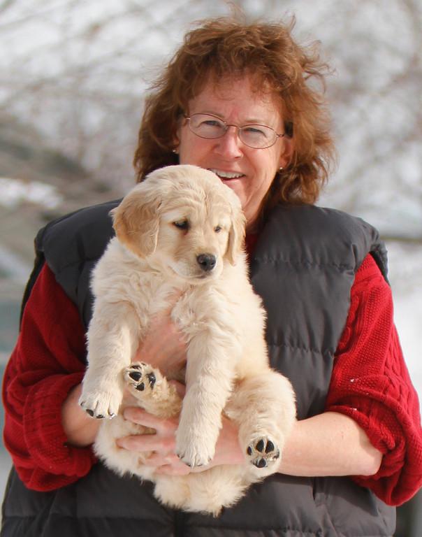 Sam the puppy 9
