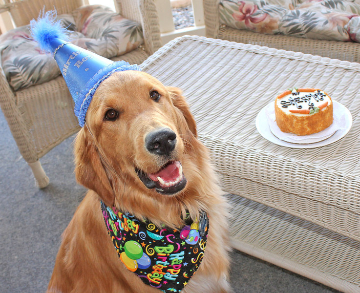 Sheramn poses for his first official birthday picture.