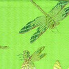 Silk Dragonflies Lime