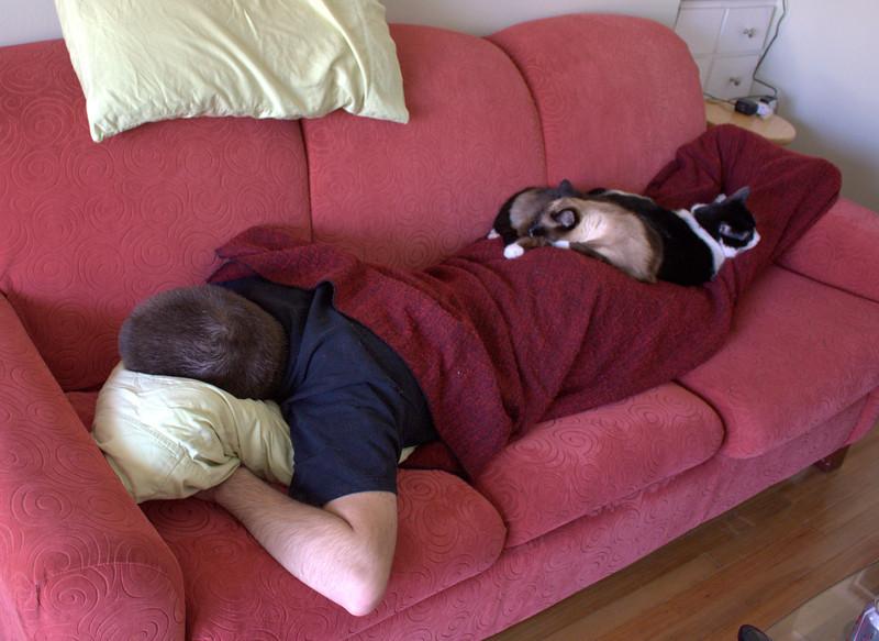 Caturday nap.