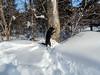 On the snowmobile trail, Feb 18-8
