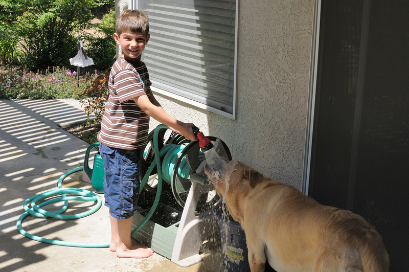 His preferred way of drinking water is straight from the hose...