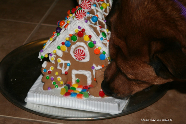The end of the Gingerbread house...