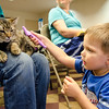 Brosnan Malek, 3, brushes therapy cat Indie during an open house with TheraPAWS at Thayer Memorial Library in Lancaster on Wednesday evening to teach interested residents about how their pet can become a therapy pet. SENTINEL & ENTERPRISE / Ashley Green