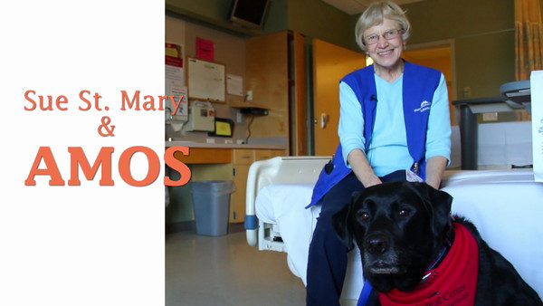 PDOG_Therapy dogs_FINAL