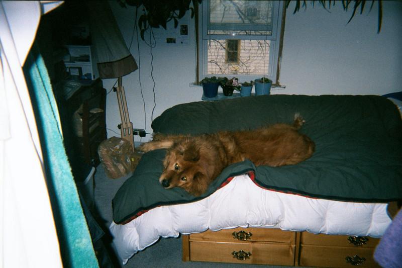 At Linda's, 2000