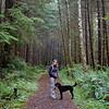 Coastal forest hike.
