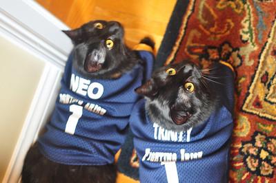 Neo and Trinity 4