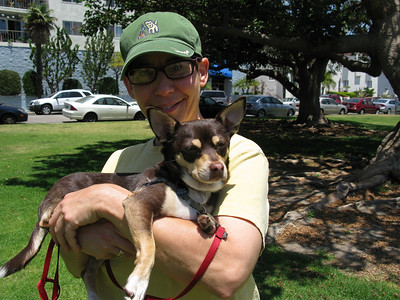 Trixie at Dog Beach, June 2009