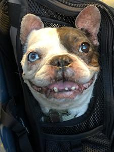 Feb 9th 018: Oh I'm so happy to be heading home! It's Friday