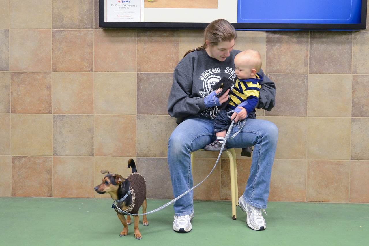 Udvar's Puppy Training Graduation