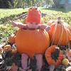 """Forget the pumpkin """"costume""""...I'm a """"real pumpkin""""<br /> <br /> Photographer's Name: Robin Bicko<br /> Photographer's City and State: Somerset, PA"""