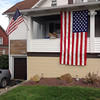 Flag<br /> <br /> Photographer's Name: Sue Weaver<br /> Photographer's City and State: Johnstown, PA