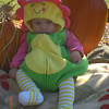 """Our """"Lil Flower Child""""<br /> <br /> Photographer's Name: Robin Bicko<br /> Photographer's City and State: Somerset, PA"""