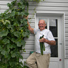 My Fathers Cucumber plant<br /> <br /> Photographer's Name: Joyce Schlosser<br /> Photographer's City and State: Hollsopple, PA