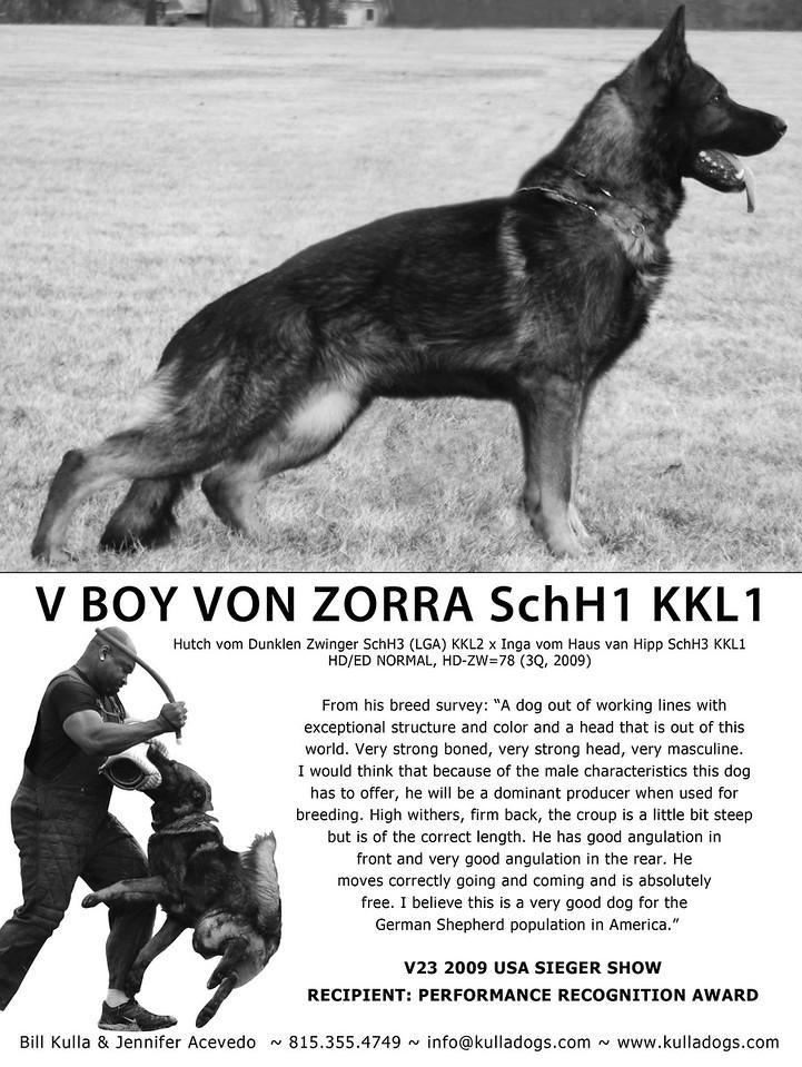 Ad in Schutzhund USA magazine